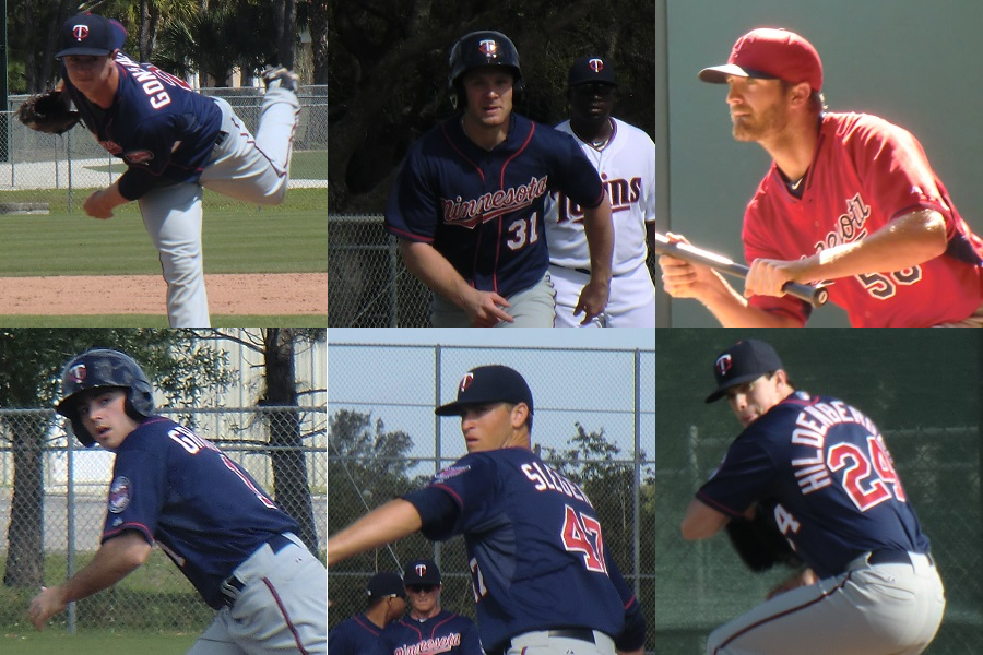 286adec3b92a4 Twins Minor League Leader Board (Through May 29) - Minor Leagues ...