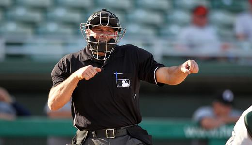 Attached Image: umpire.jpg