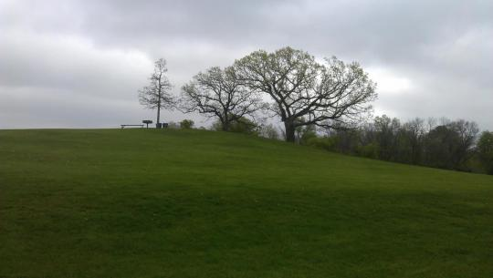 Attached Image: Hill_of_Three_Oaks.jpg
