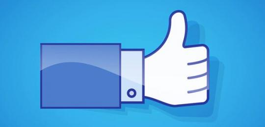 Attached Image: facebook-thumbs-up.jpg