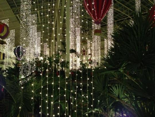 Attached Image: opryland.jpg